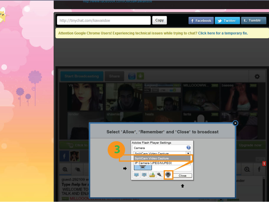 Tinychat - SplitCam Instruction. How to connect Tinychat to SplitCam